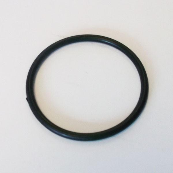 Dichtungsring Grobfilter Ansaugseite für Filterpumpe 1025 und 1050