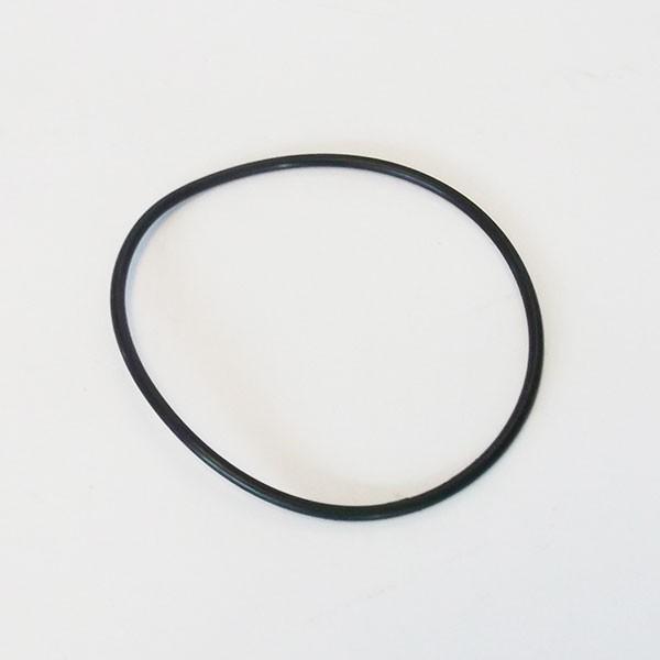 O-Ring Grobfilter für Filterpumpe 1025 und 1050